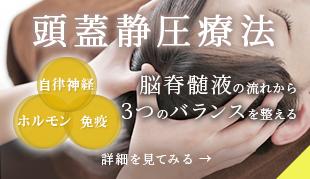頭蓋静圧療法 自律神経・ホルモン・免疫3つのバランスを、脳脊髄液の流れから整える